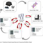 High-Throughput Genomic Sequencing Workflow